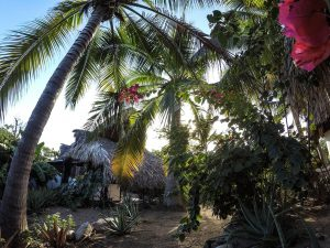Las Casitas view from outside